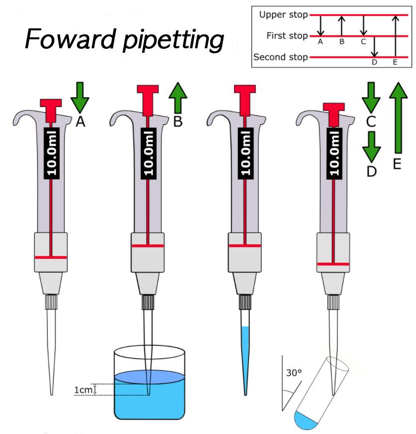 foward pipetting 사본.jpg